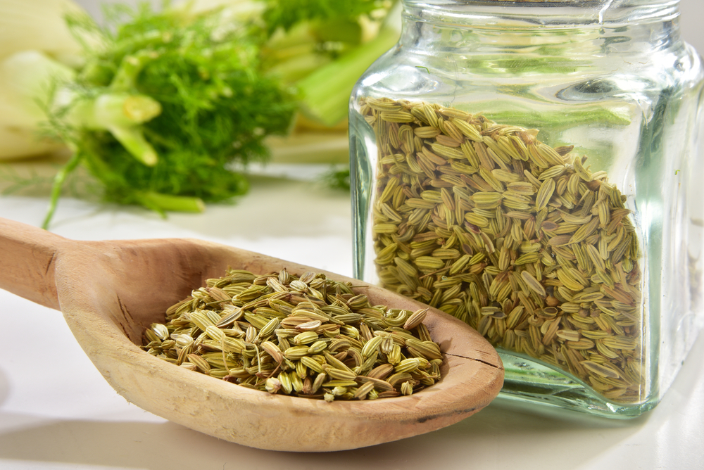 ita-fennel-seed-oil